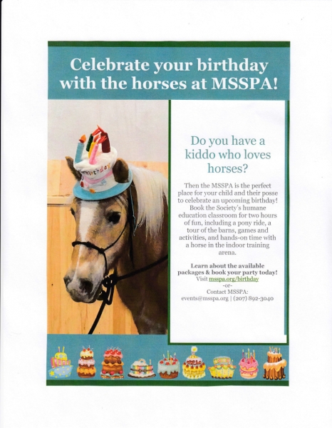 Birthday Parties with Horses